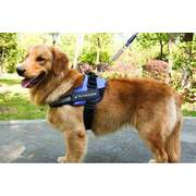 Adjustable Dog Harness Vest XXL BLUE