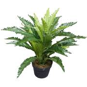 Artificial Birds Nest Fern 55cm