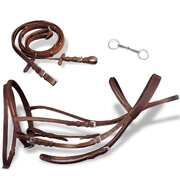 Leather Flash Bridle with Reins and Bit Brown Full